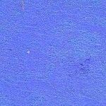 H2O Wild Blueberry Pigment